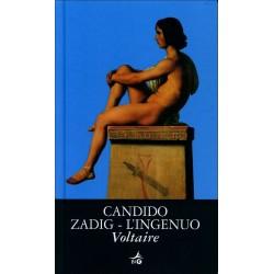 Candido-Zadig-L'ingenuo